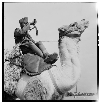 Camel Corps, 1940.
