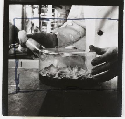 Penicillin culture flask, 1943