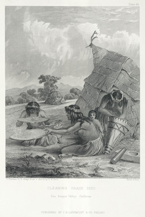 'Cleaning Gras Seed, San Joaquin Valley, California', USA, 1855.