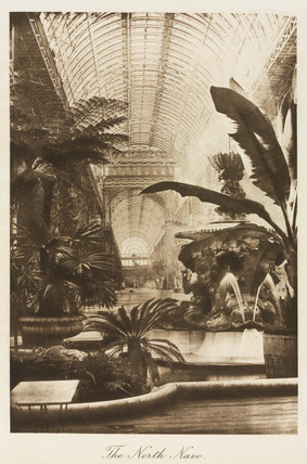 Fountain and exotic plants, north nave, Crystal Palace, London, 1911.