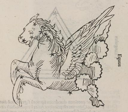 The constellation of Equus, 1488.