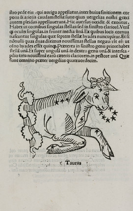 The constellation of  Taurus, 1488.