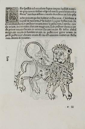 The constellation of Leo, 1488.