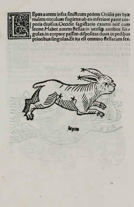 The constellation of Lepus the hare, 1488.