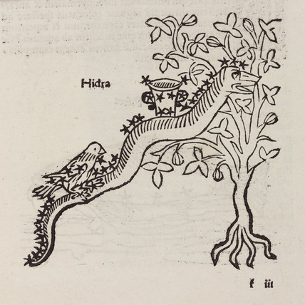 The constellation of Hydra, 1488.