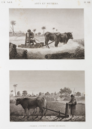 Threshing machine and plough, Egypt, c 1798.