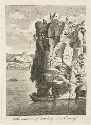 'The manner of Fowling in Norway', 1755.
