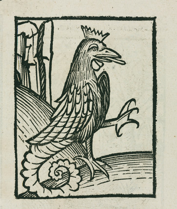 The mythical basilisk, 1497.