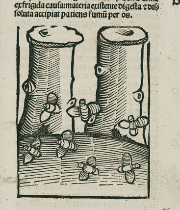The Bee, 1497.