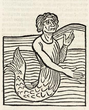 Merman, 1497.