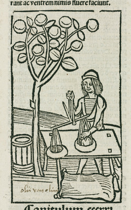 Weighing olives, 1497.