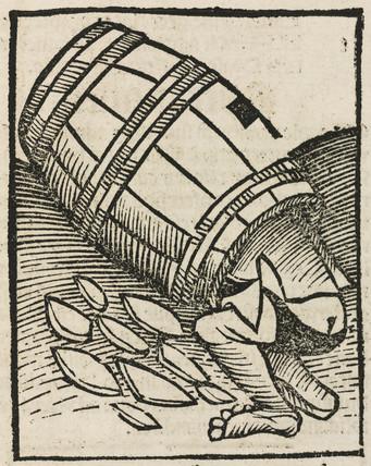 Man in a barrel, 1497.