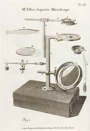 'Mr Ellis's Aquatic Microscope', 1787.
