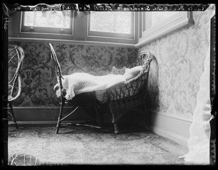 'Cat In Bed At The Schoolroom', 1900.