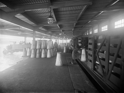 Milk churns being unloaded from a train at South Lambeth, London, 1922.
