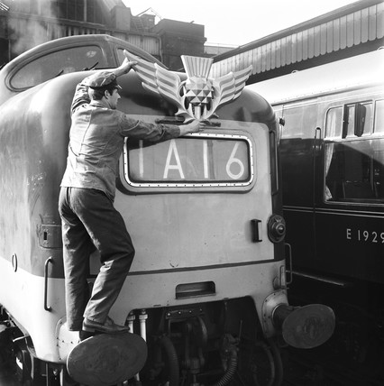 Worker attaching thistle emblem to Deltic locomotive, 9 March 1964.