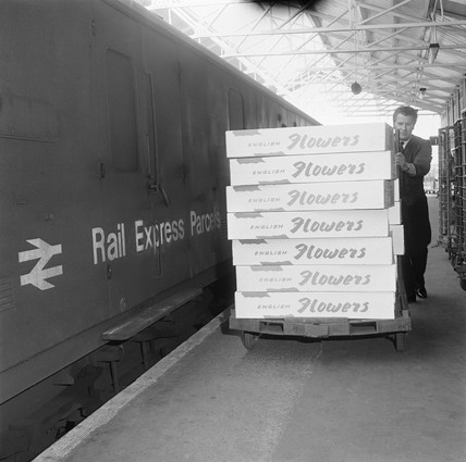 Flower traffic, Yarmouth Station, Norfolk, 1971.