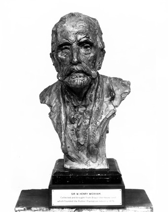Sir Henry Alexander Wickham, British botanist, late nineteenth-century.