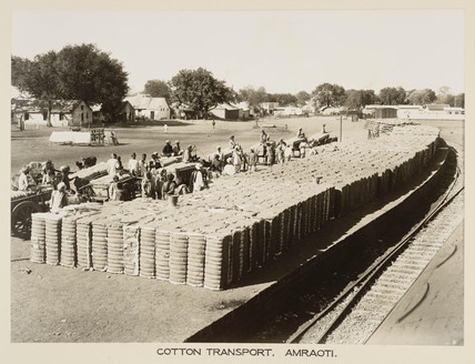 Cotton traffic, Amravati, India, c 1930.