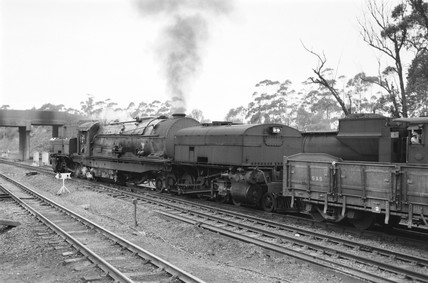 Locomotive number 2351 with a goods train, South Africa, 1968.