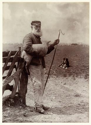 'Ninety and Nine', 1890.