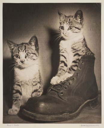 'Puss in Boots', c 1935.