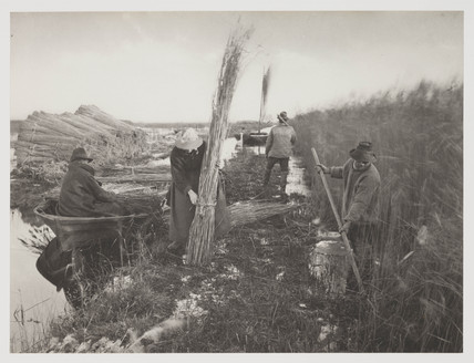 'During the Reed Harvest', 1887.