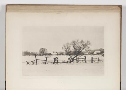 'The Snowy Marshlands', 1893.