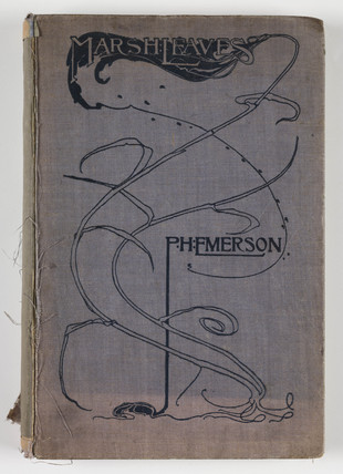 Cover of 'Marsh Leaves', 1895.
