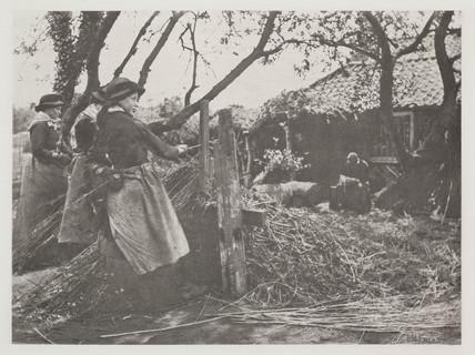 'Osier Peeling', 1888.