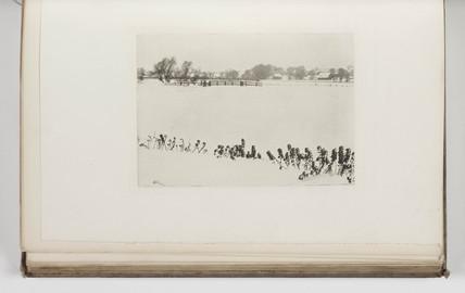 'Marsh Weeds', 1895.