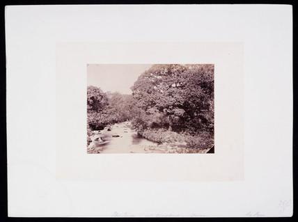 'The Teign near Chagford, Devon', c 1900.