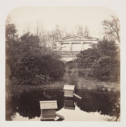 'Breeding Pool; Zoological Garden', c 1859.