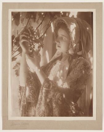'Sunshine and Shadow', 1904.