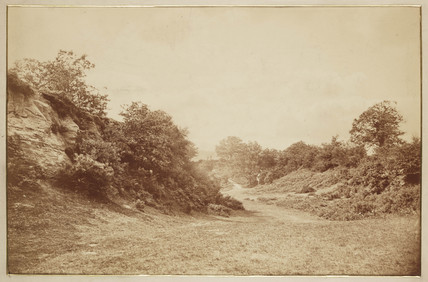 'Culverdon Down', c 1870.