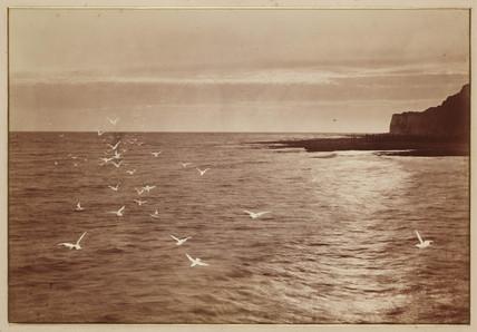 'Seagulls', c 1870s.