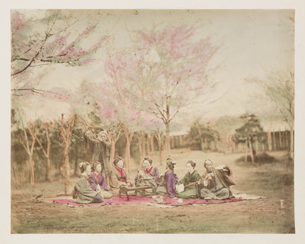 People sitting beneath cherry trees, Japan, c 1890.