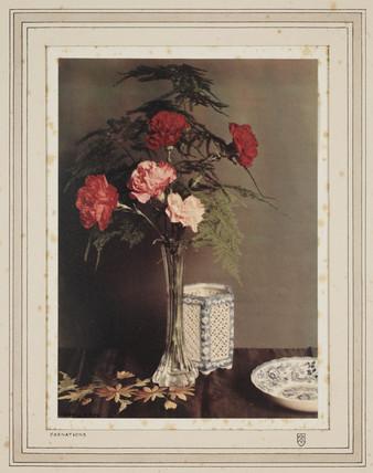 'Carnations', 1928.