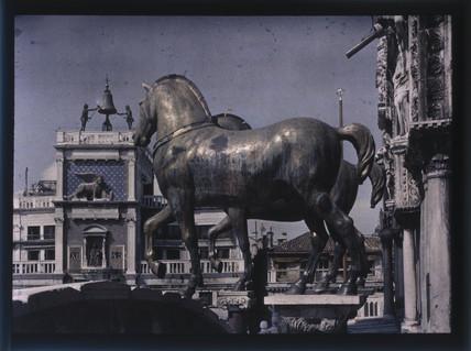 Horses, San Marco, Venice, 1925.