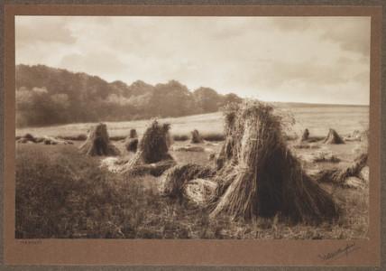 'Harvest', c 1900.