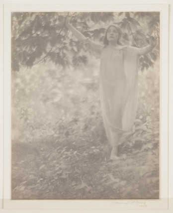 Beneath the Bough', 1909.