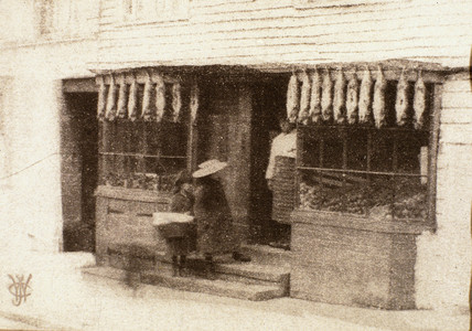 The rabbit shop, 1905.