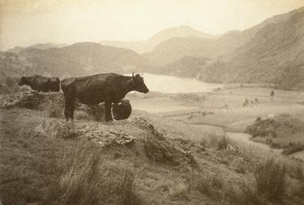Llyn Gwynant & Moel Hebog, 1914.