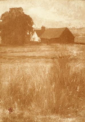 The farm, 1903.