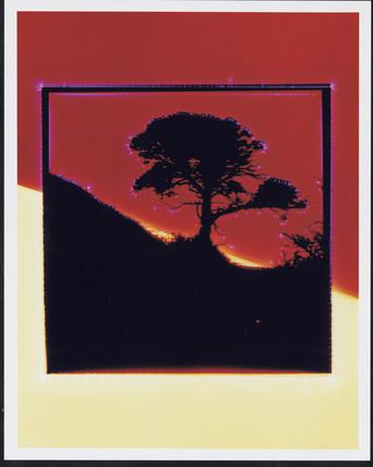 Kirlian photograph of a hillside.