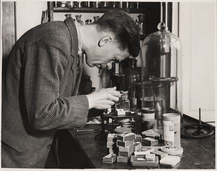 A pathologist checking specimens, 28 May 1948.