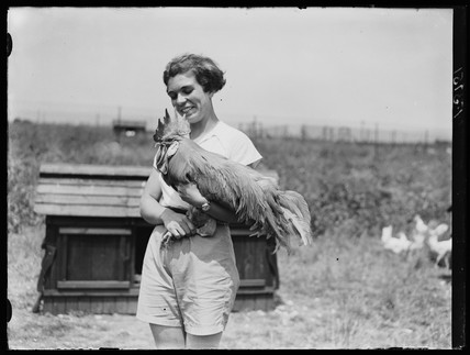 Young woman with cockerel, Hertfordshire, 15 June 1937.