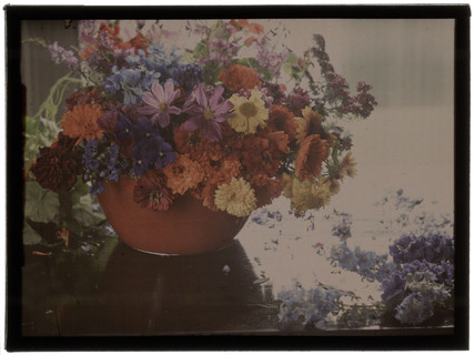 'Flower Study', c 1908.