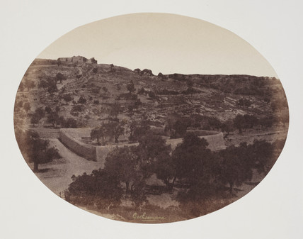 'The Garden of Gethsemany ', Jerusalem, c 1849.