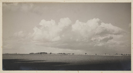'The Wheat Growing Plains...', date unknown.